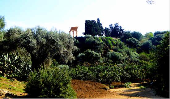 agrigento-garden